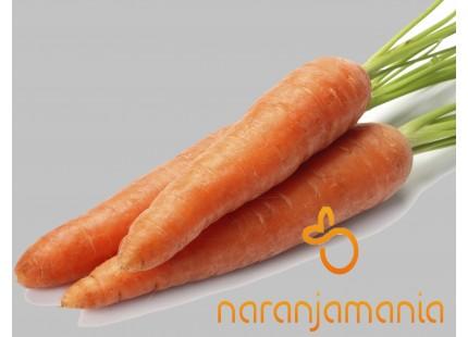 Zanahoria 1kg ✔