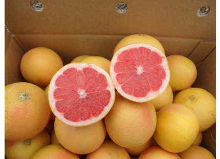 Grapefruit Star Ruby 19kg box