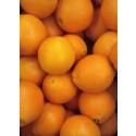 Orange Juice 1kg ✔