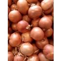 Comprar Cebollas Online 1kg