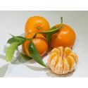 Tardia Mandarin 19 kg