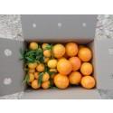 Caja Mixta 9kg Mandarina y Caqui Persimon ✔