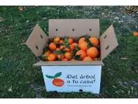 Mixed boxes 10 kg: (7kg) Navel Lane-Late Orange for table + (3kg) Tardia Mandarin