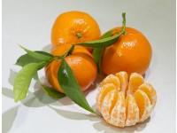 Tardia Mandarin 20 kg