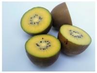 Yellow Kiwi 1kg ✔