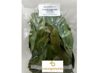 bay leaves DRY bag 50gr