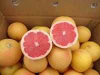 Pink Grapefruit1kg