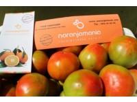 Caja Mixta 10kg de Naranja Zumo (8kg) + Tomate Valenciano (2kg)